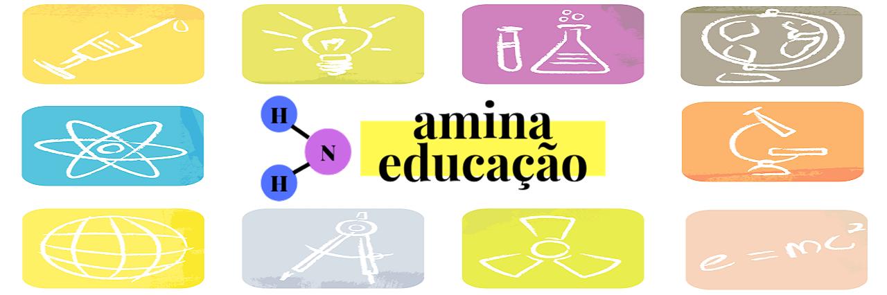 Amina Educação